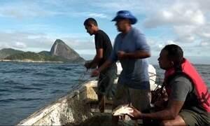 Hoje é dia de Pescador: tá pra peixe ou não tá?