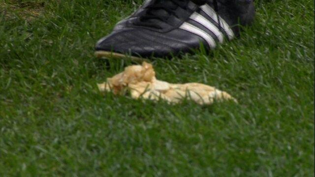 Torcida atira sanduíche no gramado na partida entre Grêmio e Palmeiras