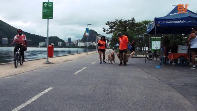 Empresária Claudia Klein começa a correr com ajuda dos cachorros do irmão