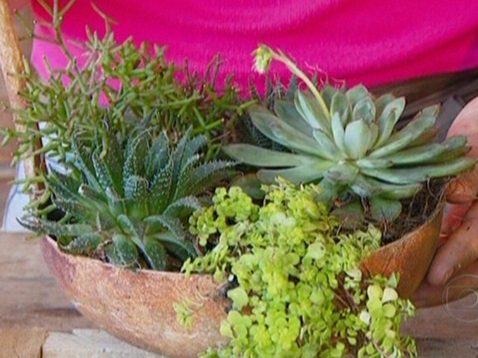 ideias jardins pequenos: Hoje