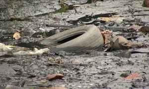 Promessa de deixar Baía de Guanabara (RJ) limpa não sai do papel