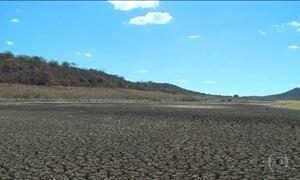 Seca no Nordeste bate recorde e afeta a produção agrícola