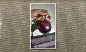 Caimito, abiu-roxo ou caimitié é uma planta originária da América Central e Antilhas