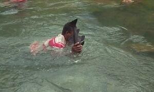 Ribeirinhos pescam com a mão durante a piracema
