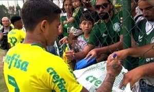 Palmeiras pode conquistar seu nono título no Brasileirão neste domingo (27)