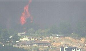 Centenas de pessoas saem de casa por causa de incêndio florestal na Nova Zelândia