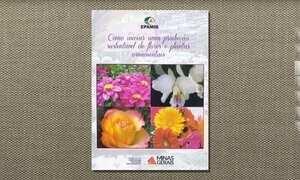 Cartilha reúne informações sobre como cuidar de flores