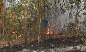 Fogo destrói Parque Estadual da Serra do Rola Moça, em BH