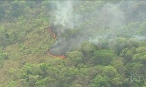 Mais de 360 focos de incêndios atingem reservas florestais e fazendas no MT