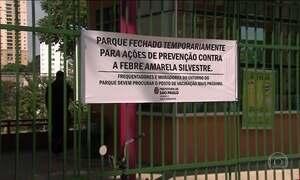 São Paulo aumenta área de vacinação contra febre amarela e fecha parques