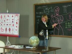 Professor ensina como ser uma celebridade - Quem quer aprender a profissão do futuro basta se inscrever na Escola Preparatória de Celebridades