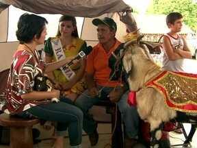 Cabaceiras: 'Tem Visita' desbrava curiosidades sobre a Roliúde Nordestina - A cidade paraibana é conhecida por ser a capital do bode