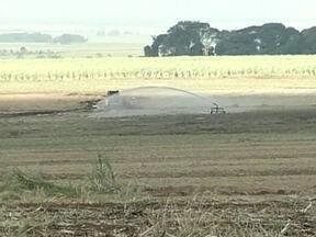 Agricultores recorrem à Justiça para receber de usina de cana-de-açúcar em SP - Alguns produtores que arrendaram suas terras para a usina, reclamam que estão há três anos sem receber. Muitos estão recorrendo à Justiça para receber em dia.