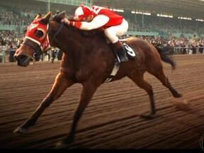 Mundo das corridas de cavalos rende ótimos filmes e tango clássico - A paixão por cavalos vem desde a antiguidade. Nas guerras e nas pistas, eles fizeram história e inspiraram filmes como 'Secretariat' e 'Seabiscuit' e o brasileiros 'Escorial'. Além disso, o famoso tango 'Por una cabeza' se baseou numa corrida
