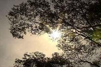Termômetros devem marcar até 36º nesta semana em Goiás - Dias quentes, tempo seco, sol escaldante. O que é ruim pode piorar. A previsão para esta semana é de até 36 graus.