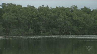 Adolescente morre afogado em rio de Itanhaém - O jovem e outras três crianças brincavam em um rio no Jardim Oásis na tarde desta segunda-feira (6). O menino não sabia nadar.