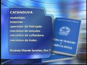 Vejas as vagas de trabalho anunciadas no Tem Notícias de Rio Preto, SP - As vagas são desta segunda-feira (20) para toda a região de São José do Rio Preto (SP). Oportunidade para quem quer trabalhar como entregador, operador de hidrojato e mecânico de colhedora.