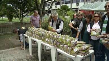 Fiscais agropecuários distribuem uma tonelada de feijão durante manifestação - Protesto aconteceu em frente à delegacia do Ministério da Agricultura no bairro do Bongi, no Recife. Categoria está em greve desde o dia 6.