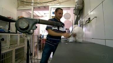 Gabriela Lian visita poet-shop em Paraisópolis - Repórter mostra que amor por cachorro não tem classe social