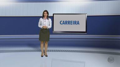 Confira mais uma dica de carreira no quadro sobre emprego com Isabela Leite - Confira mais uma dica de carreira no quadro sobre emprego com Isabela Leite