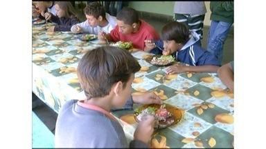 Agricultores aproveitam programas do governo para vender alimentos para as escolas - Essas iniciativas fazem total diferença na vida desses trabalhadores, que têm retorno garantido. Já os alunos, podem ter uma alimentação mais saudável.