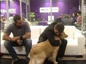 Confira rotina de Gabriel, deficiente visual à espera de um cão-guia - Paulistano depende da bengala e da boa vontade das pessoas para se locomover