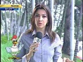 Telespectadores tiram dúvidas sobre a previsão do tempo nesta quarta-feira (10) - Galo Bendito responde aos telespectadores.