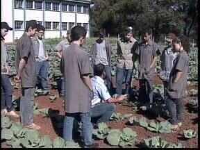 Colégio Agrícola de Ponta Grossa completa 75 anos - A procura por cursos e o número de alunos que saem com emprego garantido aumentaram nos últimos anos