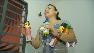 Moradores de Jacareí (SP) reclamam de pernilongos - Pernilongos atormentam moradores de bairros de Jacareí (SP).