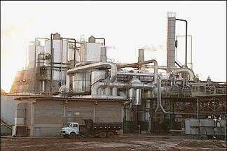 As usinas e os empregos - Milhares de trabalhadores vivem em função da cana-de-açúcar. A maior parte das vagas, no entanto, não está nas lavouras e, sim, dentro das usinas. A reportagem faz parte da retrospectiva do Nosso Campo