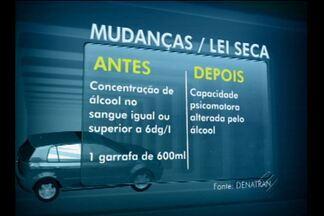 Lei Seca vai punir com mais rigor motorista que for flagrado dirigindo bêbado - Total de multas aplicadas pode chegar a mais de R$ 4 mil.