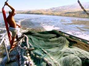 No Mar Morto, banhistas nadam mas não afundam nas águas - O Mar Morto, que, na verdade, é um lago salgado de 80 quilômetros de extensão, é compartilhado por Israel e Jordânia. Uma linha imaginária, no meio do lago divide os dois países. Nos últimos 50 anos, o nível baixou 22 metros.
