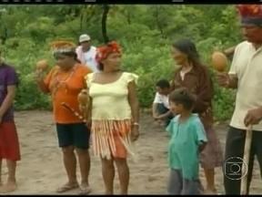 Estudo antropológico reconhece novas terras indígenas em Mato Grosso do Sul - O estudo, encomendado pela Funai, reconheceu uma área de 41,5 mil hectares como terras indígenas no município de Iguatemi, sul do Estado. Segundo a fundação, dois mil índios da etnia guarany-kaiwá seriam contemplados com a reserva.