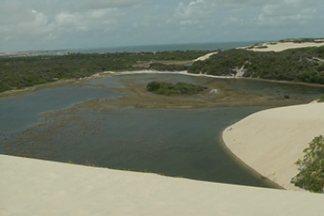 Conheça a mistura entre deserto e praia que fica na praia de Jenipabu, em Natal - As belezas exóticas do local encantam turistas, que podem até andar de dromedário.