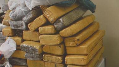 Irmãos adolescentes são presos com 34 kg de maconha em Pau Amarelo - Diarista também foi presa. Segundo a Polícia Federal ela negociava a compra de dez quilos da droga.