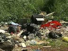 Eliminar o lixo jogado em locais errados é a meta de força tarefa - Em Londrina, a prefeitura uniu várias secretarias para resolver o problema do lixo, e, consequentemente, ajudar no combate ao mosquito da dengue.