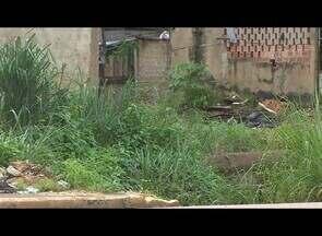 Acúmulo de pneus contribui para proliferação do mosquito da dengue em Porto Velho - A capital continua sob o risco de epidemia da doença.