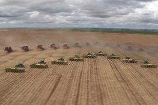 Técnica do plantio direto alia produção com preservação da terra - Produzir sem devastar o meio ambiente, atualmente é o grande desafio. Brasil ainda enfrenta muitos problemas com desmatamento e queimadas.