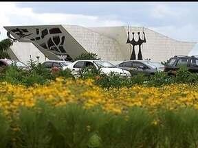 Variedade de flores espalhadas por canteiros no DF surpreende visitantes - Os canteiros da capital surpreendem os turistas, que costumam visitar a cidade para apreciar a arquitetura de Oscar Niemeyer. Na época da construção da cidade, boa parte da vegetação nativa foi retirada e substituída por espécies de fora.
