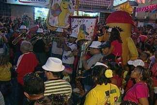 Famílias e muitas crianças participaram do tradicional bloco Dindin de Manga, em JP - Veja como foi festa.
