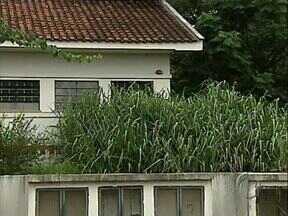 Mato toma conta de vários postos de saúde em Londrina - A situção é provocada pelo excesso de chuva e pelo atraso no serviço de capina.