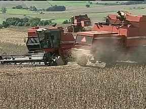 Produtores de soja do Paraná aproveitam domingo sem chuva para adiantar a colheita - O domingo de sol fez com que agricultores, do norte do estado, fizessem um mutirão de máquinas nas lavouras de soja. Em algumas propriedades o solo ainda está úmido, mas os produtores não querem perder tempo para o plantio da safra do milho.