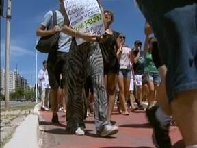 Catarinenses realizam passeata para pedir a saída do presidente do Senado, Renan Calheiros - Catarinenses realizam passeata para pedir a saída do presidente do Senado, Renan Calheiros