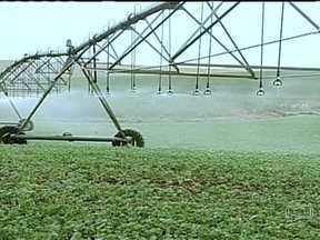 Venda de equipamentos para irrigação está aquecida - Mesmo em tempos de estiagem, é comum ver máquinas irrigando campos e garantindo a produção em todo o país. Numa indústria do Rio Grande do Sul, já são três turnos de trabalho e a fila de espera e o prazo de espera pela entrega chega a cinco meses.