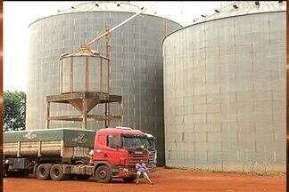 Falta de energia impede a armazenagem de grãos na região sudoeste de Goiás - Problemas na rede elétrica estão causando prejuízo no sudoeste do estado, pois a falta de energia está impedindo a armazenagem dos grãos.