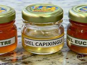 Veja quais tipos de mel podem ser consumidos sem medo - As colmeias cultivadas ficam cercadas por árvores floridas. É das flores que saem o pólen e o néctar que as abelhas vão transformar em mel. E também depende das flores o sabor deste mel.