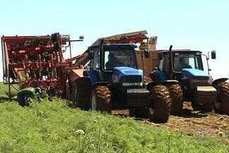 Produtores rurais enfrentam problema de falta de mão de obra qualificada em Goiás - Reportagem do Jornal do Campo mostra a valorização de alguns profissionais no campo. Tem operador de colheitadeira de soja que chega a ganhar R$ 40 mil por mês, em pico de safra.
