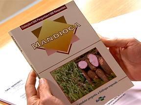 Publicação mostra como evitar infestação de tiriricas em mandioca - Folheto da Embrapa tem capítulo sobre plantas invasoras. Dúvida é de Amaro Barreto Junior, de Campos dos Goytacazes (RJ).