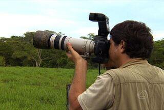 Daniel de Granvile leva Meu MS para passeio de observação de pássaros - O fotografo Daniel Granvile nasceu no interior de São Paulo, mas foi em bonito que desenvolveu o interesse pelo registro de imagens da natureza.
