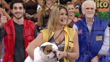 Priscila Fantin e Chico são os primeiros eliminados do Cachorrada VIP - A dupla recebeu a menor média de votos e deixa a competição do Domingão